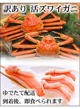 訳あり 活ずわい蟹