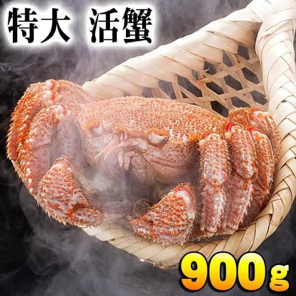 特大サイズ 活毛蟹