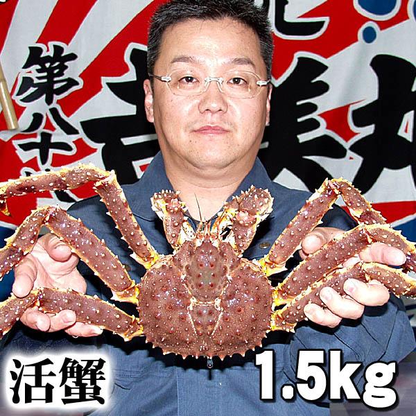 活タラバガニ オス 1.5kg前後 小型サイズ 活けたらばがに