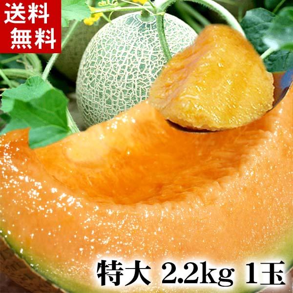 特大サイズ 北海道赤肉メロン