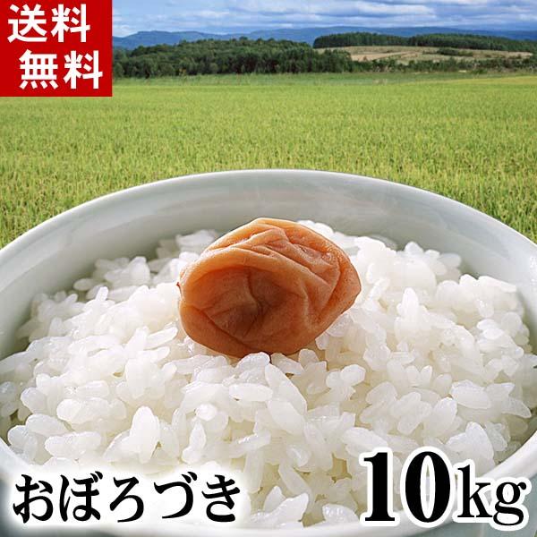 北海道産米 おぼろづき
